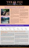 2013 Summer Newsletter Tau Deuteron (University of Texas)