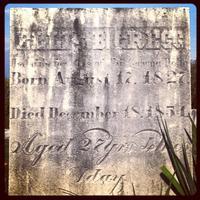 Ellis B. Gregg (Jefferson College 1848) Gravesite