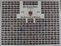 The University of Missouri Composite for 2018
